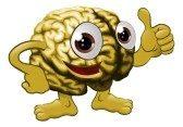 cerebro, funciones